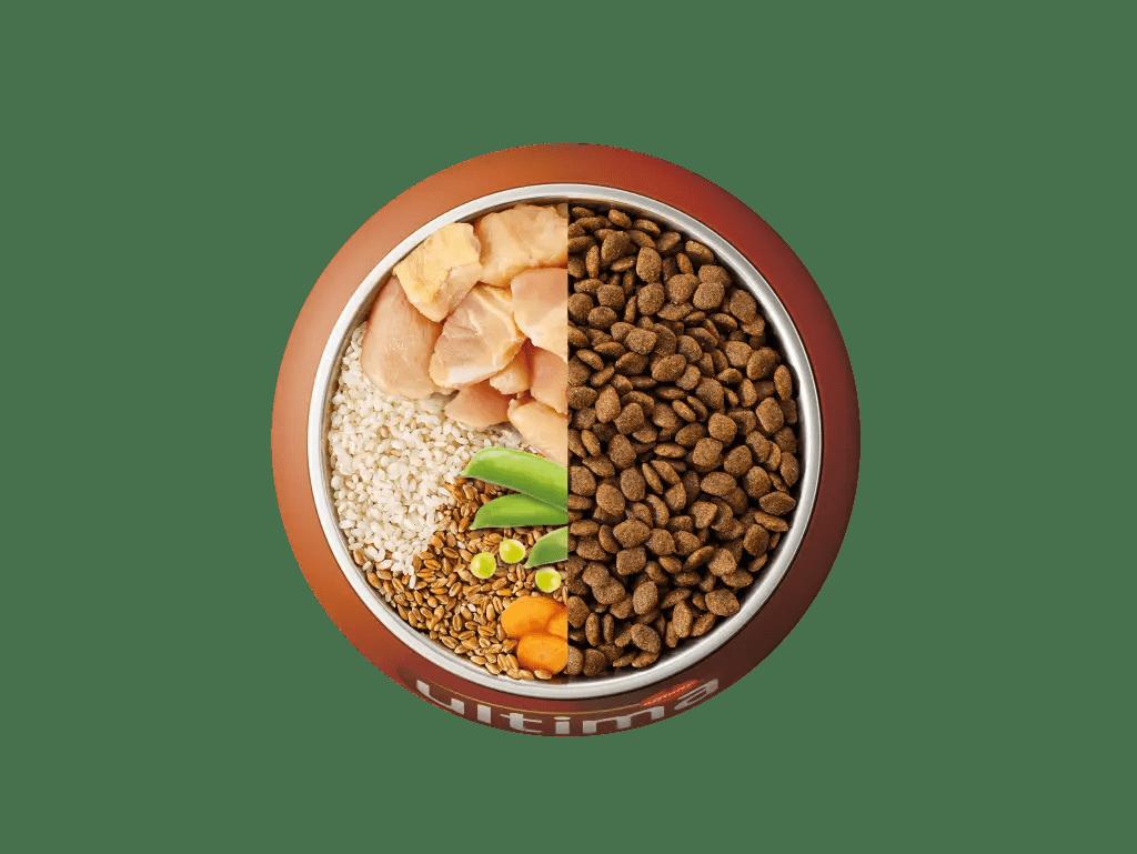 Poulet, riz, céréales complètes et légumes