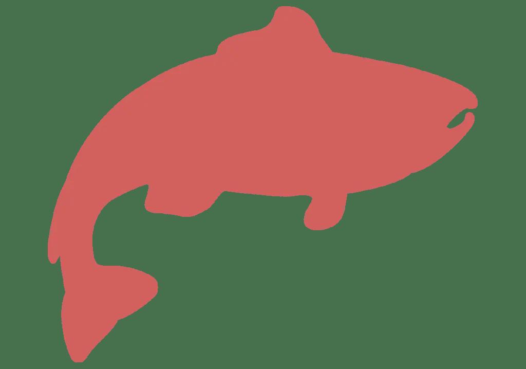 x2 con salmón